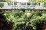 Côte d'Ivoire - Un religieux affirme : « Nous avons capté 7 millions de génies dans la forêt du Banco »