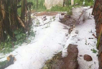 Phénomène Inhabituel: la «neige» tombe au Cameroun? Photos