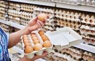 Allemagne : des milliers d'œufs contaminés retirés de la vente