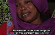 Rafles et razzias en Algérie, le calvaire des africains dans le pays qui a le plus contribué dans la lutte contre le colonialisme