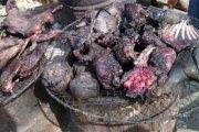 Côte-d'Ivoire/Dabou : Un maquis cambriolé, les bandits emportent une marmite de viande de brousse