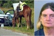 Arrêtée pour conduite en état d'ivresse... à cheval