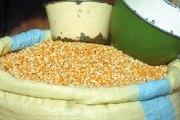 Burkina Faso – Sécurité alimentaire : 22 provinces déficitaires