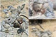 Côte d'Ivoire: La ville de Bloléquin paralysée, un gendarme tué