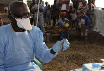 Faut-il craindre une épidémie de la fièvre de Lassa en Afrique de l'Ouest ?