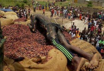 Côte d'Ivoire: Un homme meurt électrocuté en chargeant un camion de cacao