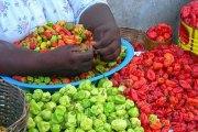Santé: Pourquoi les piments forts pourraient être bons pour nous?