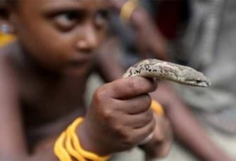 Deux morts avec une seule morsure de serpent