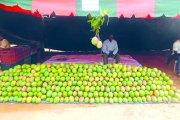 Orodara : L'avenir de la mangue en question