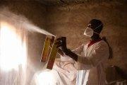 Des moustiques OGM contre le paludisme : le projet qui fait débat au Burkina