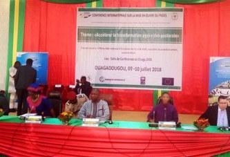 Conférence internationale sur le PNDES: l'accélération de la transformation agro-sylvo pastorale au cœur des échanges
