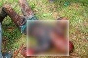 Côte d'Ivoire: Un burkinabè taillade et tueun voleur surpris en train de voler dans le champ d'un jeune wobé, la jeunesse autochtone veut réagir