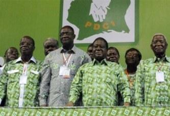 Côte d'Ivoire: «Le PDCI est «prêt pour la victoire en 2020» (cadre)