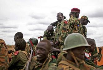 Ventes d'armes et sécurité privée, la face cachée de la Chinafrique