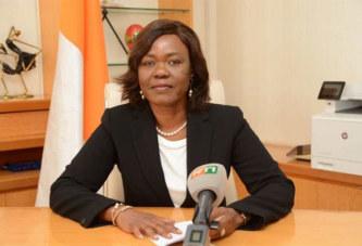Côte d'Ivoire: le taux d'investissement privé est passé de 6,3% en 2011 à plus de 14,3% en 2017 (Ministre)