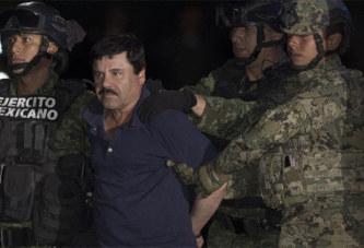 «El Chapo», la chute d'un des plus grands barons de la drogue