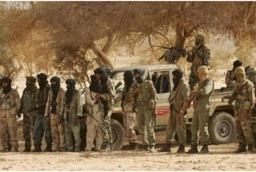 Mali: 130 djihadistes neutralisés depuis 2018