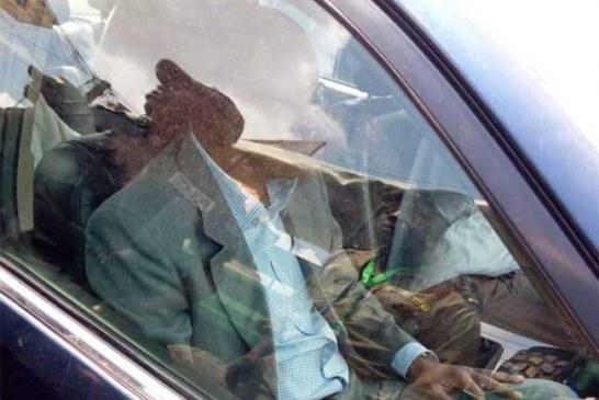 Cameroun : Maurice Kamto arrêté le jour de l'investiture de Paul Biya