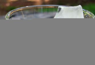 Les glaçons servis dans certains restaurants sont plus sales que l'eau des toilettes