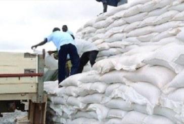 Burkina-Faso: l'Etat va consacrer plus de 61 millions de dollars pour lutter contre l'insécurité alimentaire en 2019