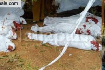 Nigeria : 26 villageois abattus par des bandits armés dans l' Etat de Zamfara