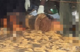 Côte d'Ivoire: Un jeune de 16 ans tue sa belle mère à coups de pilons