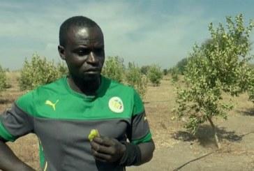 Ferdinand Coly: « Je vais renoncer à ma nationalité sénégalaise »