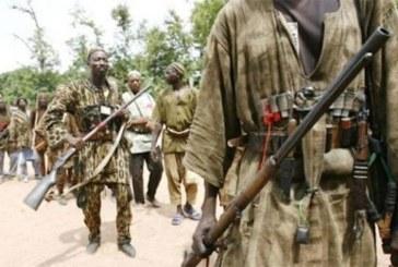 Une dizaine de civils peuls tués dans le centre par des «chasseurs traditionnels Dozos»