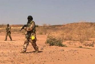 Niger: Une dizaine de soldats tués dans une embuscade près de la frontière malienne