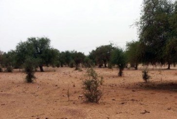Niger: qu'est-il arrivé à Oumarou Roua, disparu vers Tongo Tongo le 11 avril?