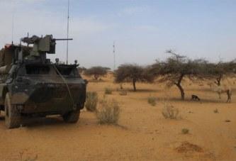 Mali: une vingtaine de djihadistes «neutralisés»