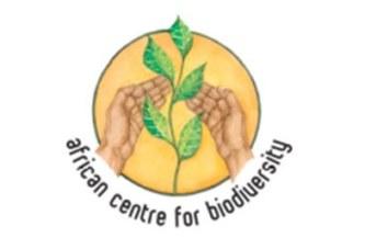 La société civile dénonce le lâcher de moustiques génétiquement modifiés au Burkina Faso