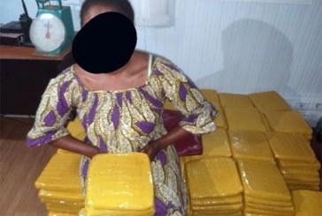 Côte d'Ivoire : Une dame de 35 ans interpellée avec 240 kg de cannabis