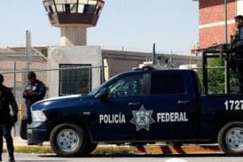 Quatorze policiers tués dans une embuscade au Mexique