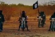 Burkina Faso: Une vingtaine de terroristes abattus à Toéni et Bahn