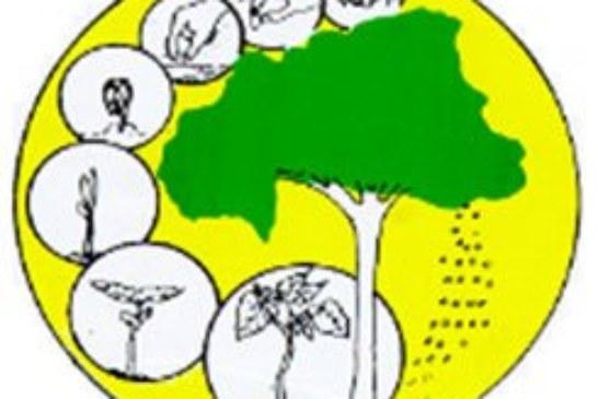 Centre National de Semences Forestières : Avis à Manifestation d'intérêt pour études préparatoires de projet