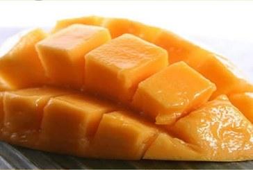 Les 7 vertus de la mangue pour la santé