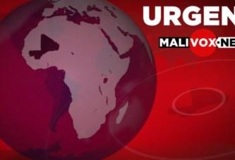 Un terroriste tué et du matériel récupéré par l'armée malienne au cours d'un accrochage à Koro