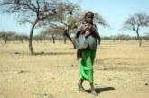 Burkina :Diamondji(Est): Au moins une dizaine de civils tuées vendredi dans une attaque