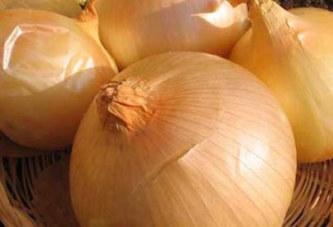 La consommation de l'oignon pour en finir le virus Ebola ?