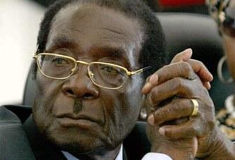 ZIMBABWE : Trois mois de prison pour un professeur qui a insulté Mugabe  18 mai