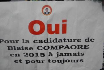 CONSEIL NATIONAL DU CDP POUR LE REFERENDUM: L'opposition ne doit s'en prendre qu'à elle-même