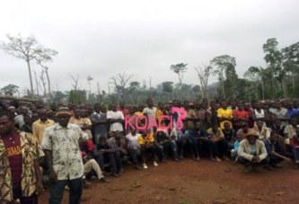 Côte d'Ivoire : 7 mois après l'arrestation d'Amadé Ourémi, le mont Péko toujours exploité illégalement