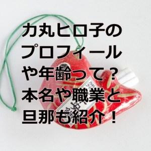 rikimaruhiroko