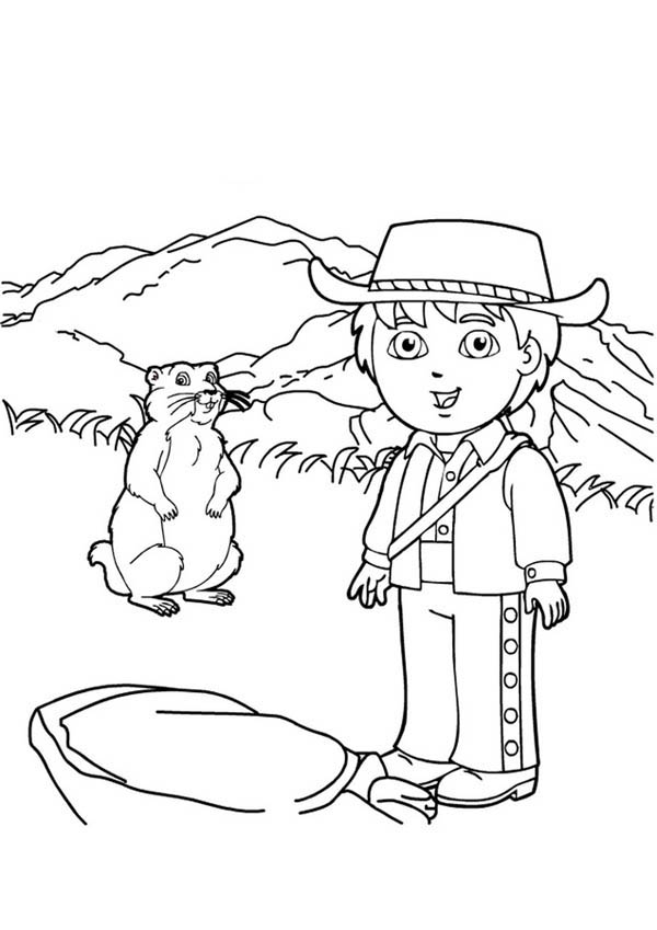 diego adventure in go diego go coloring page  netart