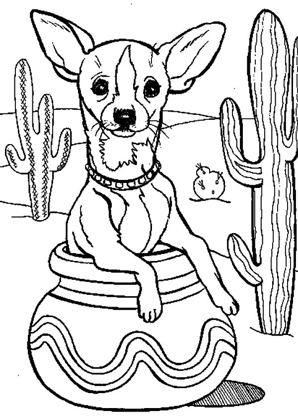 Cactus Tree and Chihuahua Dog Inside Pottery Coloring