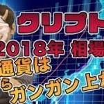 【クリプト鬼】2018年の仮想通貨相場をぶった斬り展望