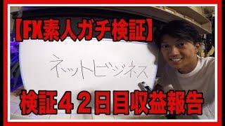 ☆初心者必見☆「FX初心者」素人でも稼げた!〜ガチ検証42日目〜