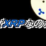 【仮想通貨】リップル(XRP)に投資する理由