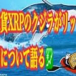 【仮想通貨】仮想通貨XRPのクジラがリップルの転換期について語る💹